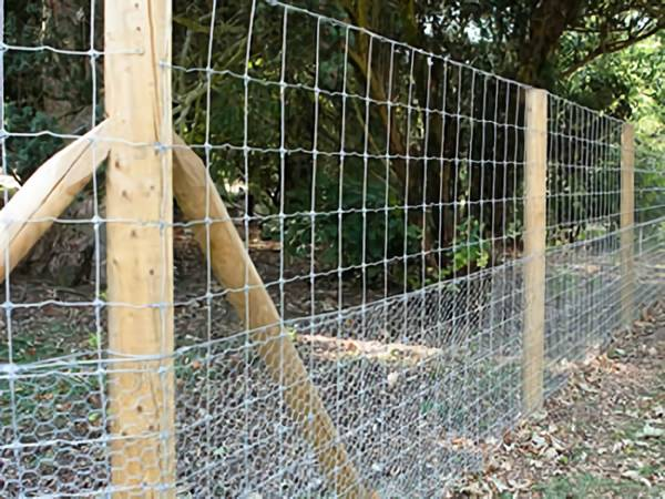 Chicken Wire Fence for Feeding Poultry, Protecting Plants, Prevent ...